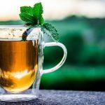 چای کامبوجا